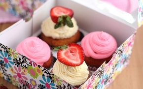 Picture white, berries, pink, box, strawberry, cream, dessert, cakes, sweet, cupcakes