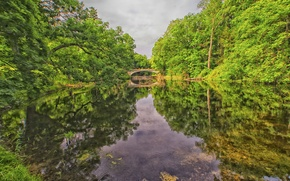 Picture forest, the sky, trees, bridge, lake, Park, river