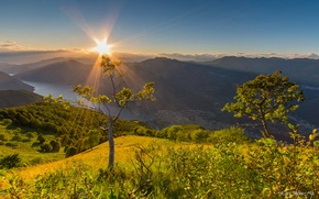 Picture trees, sunset, mountains, lake, Italy, panorama, Italy, lake Como, Lombardy, Lombardy, Lake Como