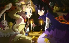 Picture look, smile, girls, toys, anime, pumpkin, witch, Halloween, halloween, anime, costumes, kitty, to rik takanashi, …