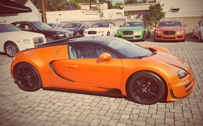 Picture Bugatti, Grand, Veyron, Orange, Sport, Vitesse