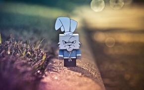 Picture rabbit, evil, ninja, cardboard, box, gloomy, ninja