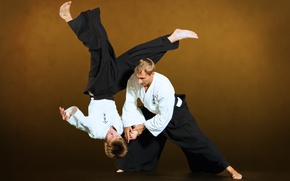 Picture Ivashkin, Aikido, ntgfa