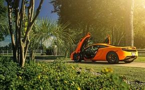 Picture McLaren, Orange, Sun, MP4-12C, Supercar, Wheels, Rear, ADV.1