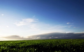 Picture field, the sky, grass, clouds