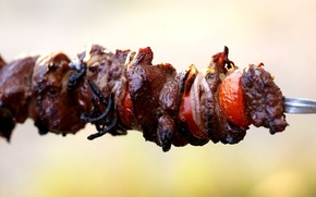 Picture bow, meat, pieces, tomato, kebab, skewer