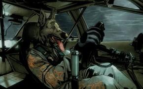 Picture auto, dog, driver