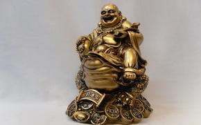 Picture toad, wealth, prosperity, khatey