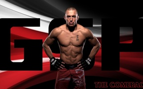 Picture fighter, fighter, champion, mma, ufc, mixed martial arts, georges st-pierre