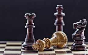 Picture macro, horse, the game, chess, Board, figure, black background, king, Queen, Mat