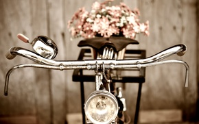 Picture flowers, bike, background, Wallpaper, mood, the wheel, wallpaper, flowers, bicycle, widescreen, background, full screen, HD …