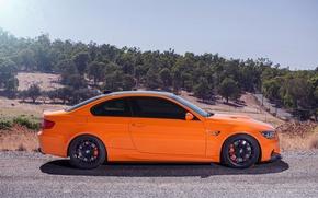 Picture the sky, trees, orange, black, bmw, BMW, slope, profile, wheels, drives, black, tuning, orange, e92