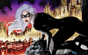 Picture the sky, eyes, look, stars, the city, height, mask, art, costume, white hair, marvel, cat ...