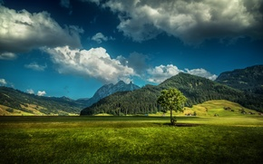 Picture field, forest, grass, clouds, mountains, tree, HDR, Switzerland, houses