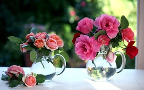 Picture flowers, roses, window, pitchers