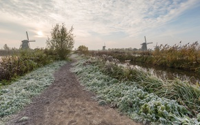 Picture frost, mill, Netherlands, Kinderdijk, South Holland