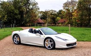 Picture white, Ferrari, 458, lawn, Spider
