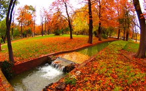 Picture autumn, water, trees, Park, stream