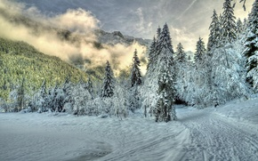 Picture mountains, snow, nature, winter, fog, trees, trail, clouds, forest