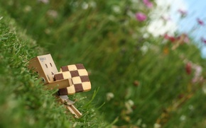 Picture grass, cookies, danbo, box