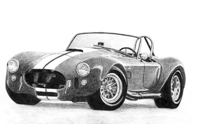 Picture figure, Roadster, 1965, 427 S/C, Shelby Cobra