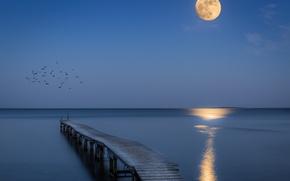 Picture sea, night, bridge, the moon