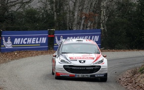 Picture Peugeot, Peugeot, Rally, Rally, Monte Carlo, IRC, 207, Bryan Bouffier