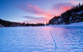 Wallpaper winter, macro, snow, river, ice