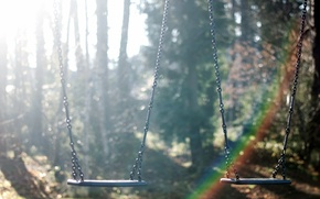 Picture fog, swing, morning