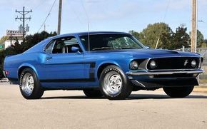 Picture Mustang, 302, Boss, '1969