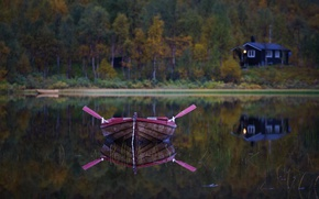 Picture forest, lake, boat, paddles