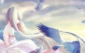 Picture the sky, girl, clouds, light, birds, art, pendant, vocaloid, hatsune miku, Vocaloid, Holmes Â