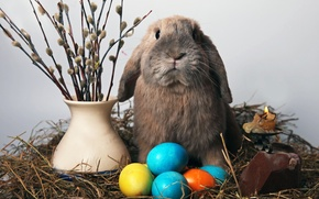 Picture candle, eggs, rabbit, Easter, straw, Verba