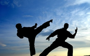 Picture The sky, The fight, Karate, Silhouette, Fighters, Battle, Blow, Sport, Wallpaper, Martial arts, Shadows
