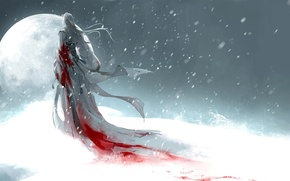 Picture girl, snow, the moon, blood, art, heise
