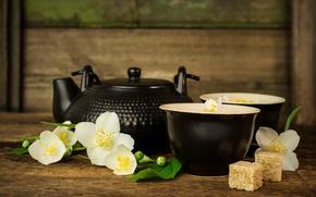 Picture flowers, tea, kettle, sugar, the ceremony, Jasmine