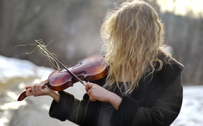 Picture girl, violin, hair