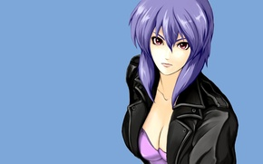 Picture look, girl, background, Ghost in the Shell, purple hair, leather jacket, The Fireworks Kusanagi, Motoko …