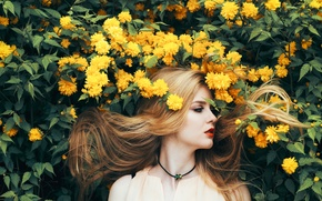 Picture Girl, Nature, Flowers, Beauty, Yellow, Summer, Hair, Long