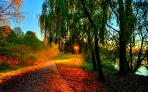 Picture rays, river, hdr, bench, bench, leaves, leaves, sunset, trees, water, walk, the sun, river, autumn, ...