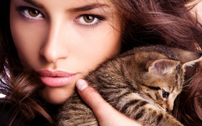 Picture girl, face, kitty, animal, hair, brown eyes