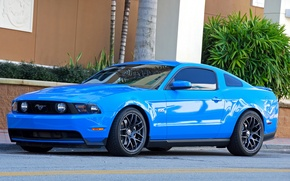Picture Ford, mustang, blue