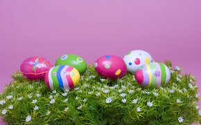 Wallpaper Eggs, The Resurrection Of Christ, Grass, Chickens, Easter Eggs, Pascha, Easter