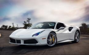 Picture Ferrari, GTB, White, 488