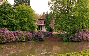 Picture trees, flowers, house, pond, Park
