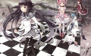 Picture girls, anime, Mahou Shoujo Madoka Magica