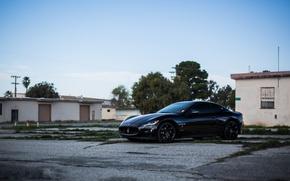 Picture trees, black, Maserati, home, black, side view, Maserati, MC Road, Granturismo, black rims, GranTurismo, Stradale