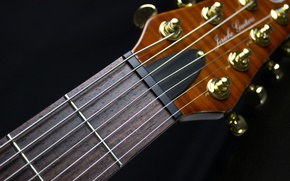 Picture macro, guitar, strings, black background, Grif