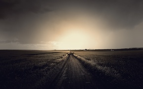 Picture road, field, the sky, grass, the sun, clouds, light, landscape, nature, grass, road, sky, field, ...