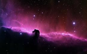 Picture Stars, Nebula, Horse Head